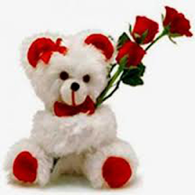 Deliver Softtoys and Flowers to Chennai
